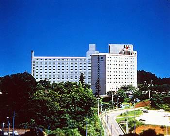 Hotel Nikko Narita Airport Tokyo