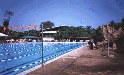 Hotel Suerre Guapiles Limon Costa Rica